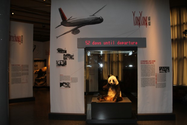 2015-05-22-Museum-fur-Naturkunde-Berlin-032-620x413
