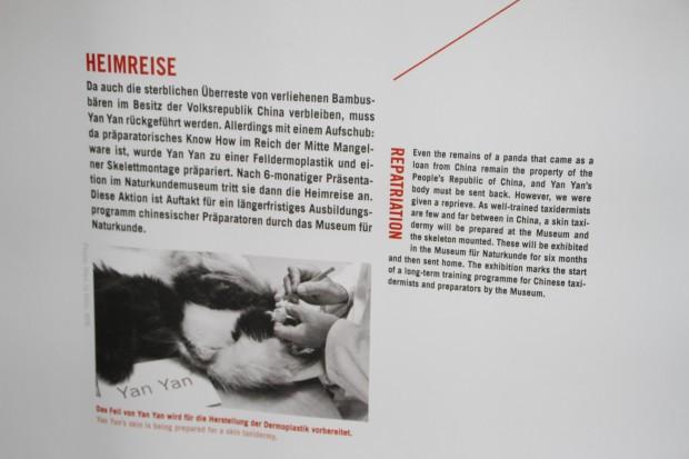 2015-05-22-Museum-fur-Naturkunde-Berlin-033-620x413